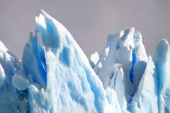 Calafate - Perito Moreno