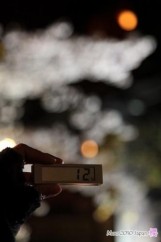 白川祇園-夜櫻14