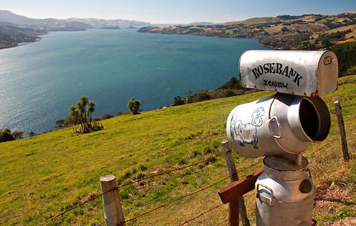 Otago Peninsula 01