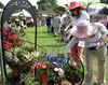 Making a choice (jpotter3) Tags: fullertonarboretum greenscene gardensale