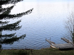 the lake is high (dmixo6) Tags: nature beautiful spring earth april organic muskoka dmixo6