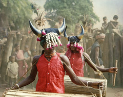 The Drummers (Muria 8) (Collin Key (away)) Tags: india youth jungle ind adivasi chhattisgarh muria bastar youthhouse ghotul collinkey chelik nayanar gondtribes tribalpeopleofindia villagedormitory motiari kingdomoftheyoung verrierelwin rodericknight