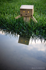 026/365:  Exploring The Edge Of The World. (Randy Santa-Ana) Tags: reflection nature water toys explore danbo gf1 project365 danboard 365daysofdanbo