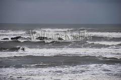 00139279 (wolfgangkaehler) Tags: sea usa landscape coast nationalpark surf unitedstates wind unitedstatesofamerica wave olympicpeninsula unescoworldheritagesite worldheritagesite northamerica washingtonstate olympicnationalpark kalaloch northamerican stormwatching roughocean