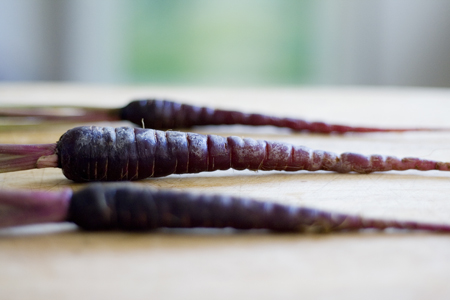 Purple Carrots (6)