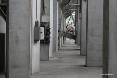 image207-1 (arno_brosi) Tags: rotterdam gem botlek maassilo graansilo