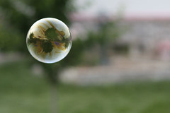The World in a Bubble [explored] (AgentThirteen) Tags: grass outdoors soap floating bubbles bubble float