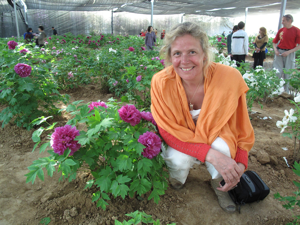 Taiji teacher Pamela Hiley in the peony garden