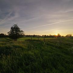 Wonderful Holland (momono) Tags: sunset holland nature gold golden glow drenthe goldenglow holthone nikond90 momono vertorama momonofotografie tokinaaf1224mmf4netherlands