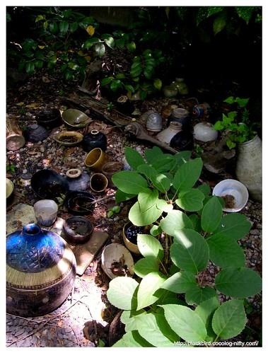 Garden 100522 #01