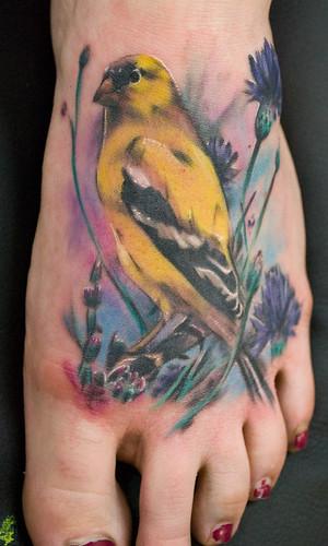 yellowfinch
