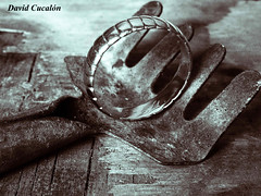 The ring (David Cucaln) Tags: stilllife macro art photoshop olympus ring lith tool 2010 bodegon anillo fineartphotography anell eina e510 herramienta digitalcameraclub cucalon davidcucalon