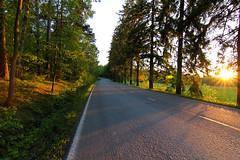 Ruissalon puistotie (Aspiriini) Tags: road canon suomi finland turku ruissalo bo jonilehto turunseutu aspiriini