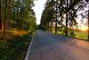 Ruissalon puistotie (Aspiriini) Tags: road canon suomi finland turku ruissalo åbo jonilehto turunseutu aspiriini