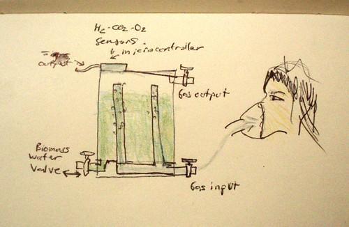 Algae - Photobioreactor