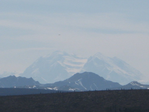 denali national park mountain