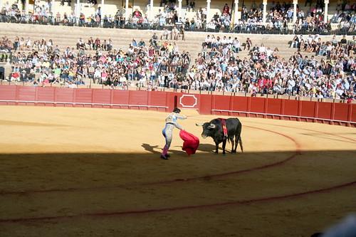Dianas- Spain 2010 388