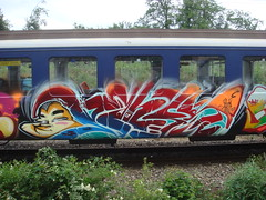TrasHTraiN! (linguistone) Tags: graffiti panel can spray piece trashtrain