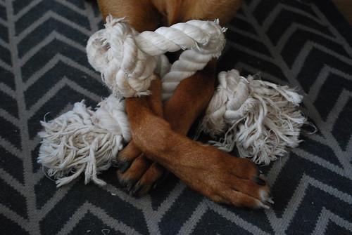 my rope