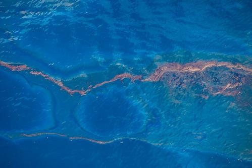 tedx-oil-spill-9811