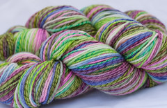 Fruitful Vine on Licorice Twist Merino Wool - 4 oz. (...a time to dye)