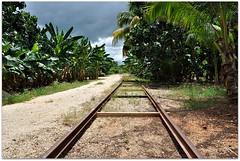 Railroad Tracks (Stella Blu) Tags: stella vanishingpoint blu cuba caribbean morn stormclouds railroadtracks gamewinner nikkor18200 ciegodevila thechallengefactory nikond5000 pregamewinner startswithprore