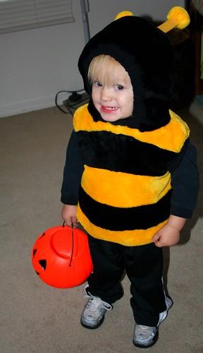 he is a bee!