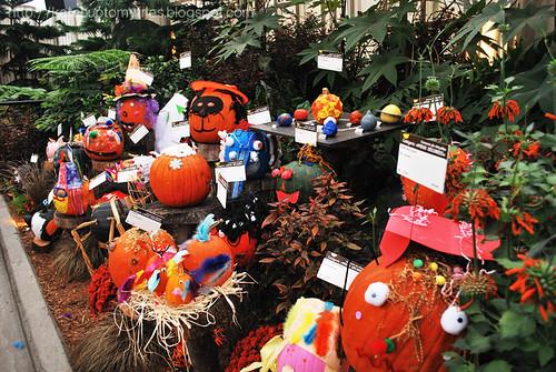 pumpkin-13