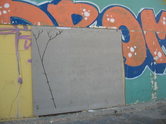 roots (kufsened) Tags: life park street city urban abstract color art lines rock pencil ink work out see israel stencil graphic you action cut earth space tel aviv touch obey free style objects evolution pop just spots exotic soul revolution future hero cult planet marker info dada animated write sight dots messege visual amusment citizen hear active mankind tlv rehab merk shool impuls brut reclaim context foma anonimus dicovery sened kufsonim likeble kufsun aim72