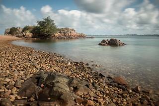 L'arbre et la plage aux rochers