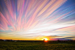 Pheonix Feathers (Matt Molloy) Tags: mattmolloy timelapse photography timestack photostack movement motion sun light sunset colourful sky clouds trails lines field grass trees countryside seeleysbay ontario canada landscape nature lovelife