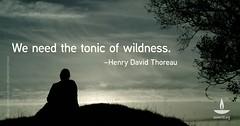 Thoreau: 'We need the tonic of wildness' (UU World) Tags: uuworld uua unitarianuniversalism unitarianuniversalistassociation thoreau henrydavidthoreau wildness nature