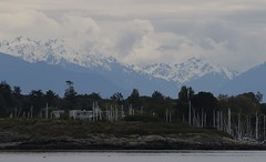 View across Uplands Park Bay to snow capped mountains on mainland BC (Paul Cottis) Tags: paulcottis vancouverisland 18 may 2017 victoria view upland oakbay
