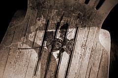 IMG_0003 Rain and Morning Dew (oldimageshoppe) Tags: leaves redbud chair earlymorningsun dew sepia stilllife summer