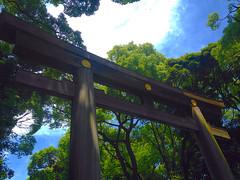 Meiji Shrine (Torii) (Kai Lauridsen) Tags: tokyo tokio japan asia northeastasia eastasia asien azië architecture capital city east orient reise resa reizen rejse reseblogg reiseblog rejseblog reisblog blog blogger travel travelblog travelblogger photographs photography art fujinomiya temples history historical culture kultur cultuur