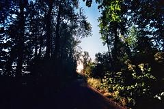 Film Adventures Alton Baker Eugene Oregon (C. Campbell) Tags: kodak ektar n65 nikon eugeneoregon oregon pnw oregonexplored autzenstadium autzen altonbaker uofo