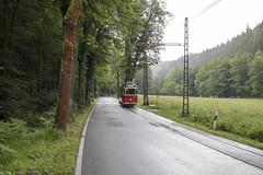 Kirnitzschtalbahn oder Lockwitztalbahn? (Tim Boric) Tags: kirnitzschtalbahn lockwitztalbahn tram tramway streetcar strassenbahn 9 nassergrund