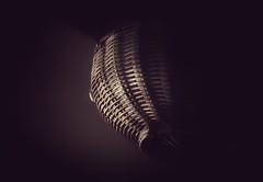 the little things... (Leitratista) Tags: focus composition constractivecriticism color lowkey light basket hang photography photolovers photographyart lovephotography mood visualnarrative visualart nikond3400 nikondslr nikoncapture 1855mmafpvrkit kitlens dofart shadow