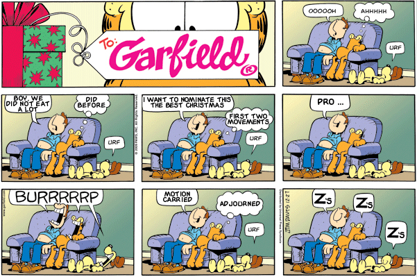 Garfield: Lost in Translation, December 27, 2009