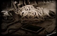 Dry Dock..series (joe-fabulous) Tags: shadows rope drydock boatyard lifering rothesay