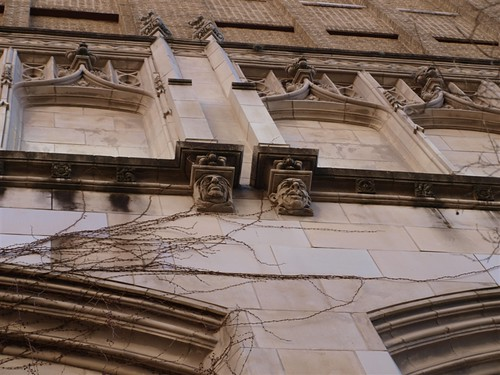 Gargoyles building San Antonio Riverwalk .JPG