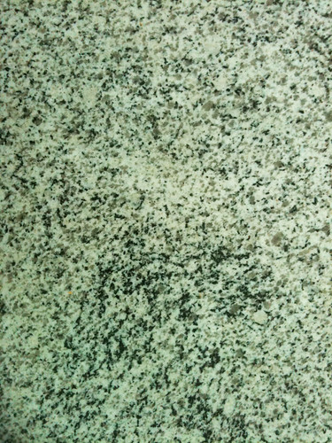 Rock365 : 03 01 2010 : Plagiogranite
