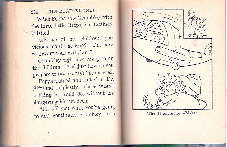 roadrunner_102