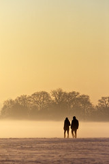 Strollers (Paul O' Connell) Tags: park ireland winter sunset people dublin mist snow fog couple frost lovers phoenixpark