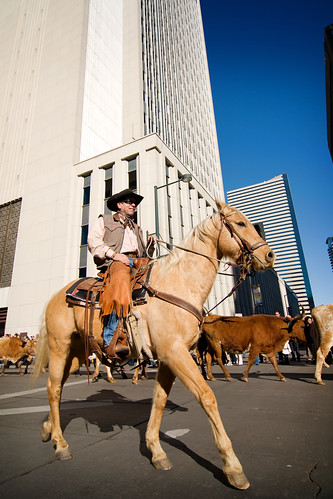 National Western Stock Show Parade