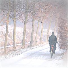 Biking in the mist (greta colpaert) Tags: mist bravo biking mywinners innamoramento anawesomeshot superaplus aplusphoto theunforgettablepictures theunforgettablepicture nikond300 alwaysexc theauthorsplaza lovendegembelgium
