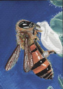 28-Bee