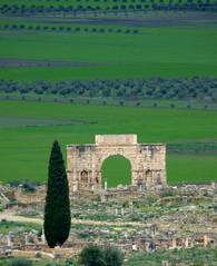 Triumphal Arch - Volubilis (Aaron A. Aardvark) Tags: ruins roman triumphalarch volubilis meknes