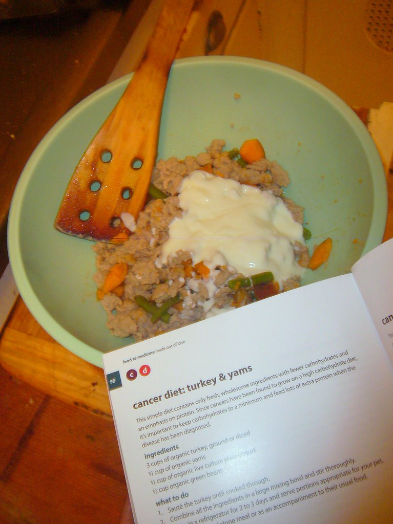 Cancer diet recipe from the honest kitchen boogies blog i started with this recipe because i already had all the ingredients at home ground turkey yams green beans and yogurt i sauteed the turkey with a forumfinder Choice Image