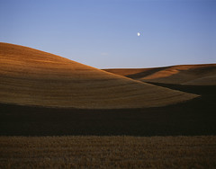 Rolling hills croplands Eastern Washington by Jim Corwin (Jim Corwin's PhotoStream) Tags: travel sunset summer food tourism beautiful beauty field horizontal landscape outdoors photography countryside scenery quiet farm wheat agrarian farming sightseeing harvest scenic peaceful nobody tourists hills pasture crop serenity pacificnorthwest americana agriculture pastoral washingtonstate fertility abundance mothernature rollinghills cultivation wheatfields harvesting easternwashington cropland palousehills ruralscene farmscene steptoebutte farmscape localattractions rollinglandscape famouslocation harvestedfields agriculturefield cultivatedlands